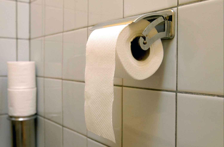 qu utilisait on avant l invention du papier toilette le savais tu. Black Bedroom Furniture Sets. Home Design Ideas