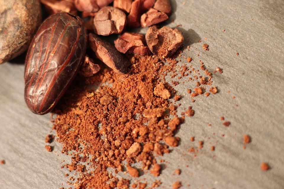 graine de cacao et poudre