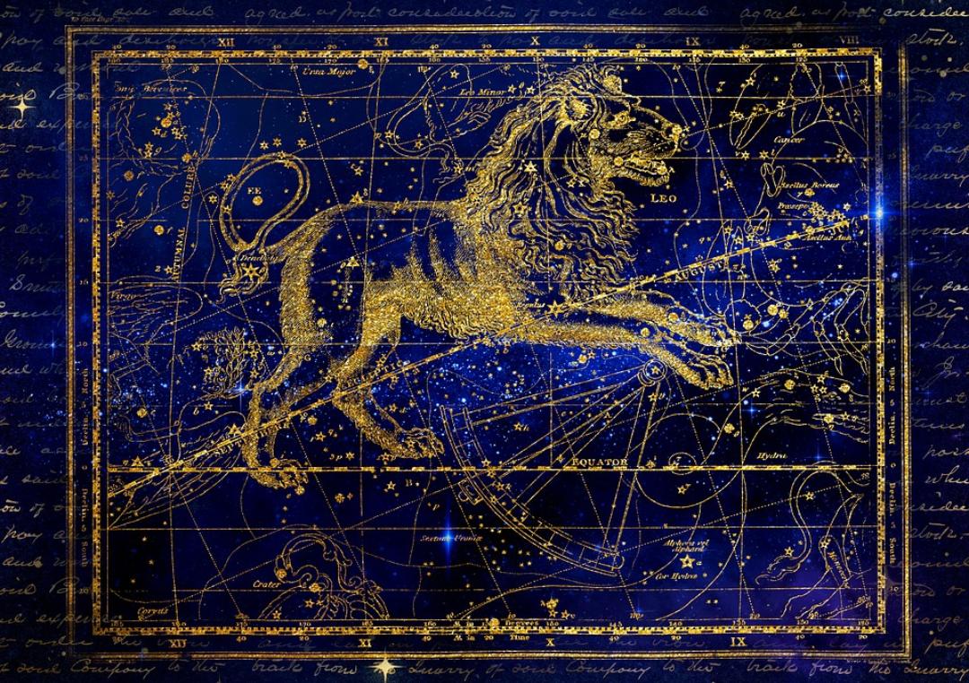 signe astrologique signe du zodiaque lion