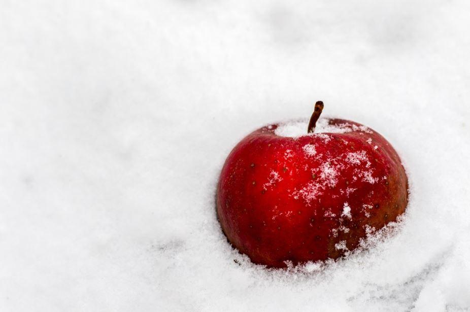 pomme neige blanche-neige