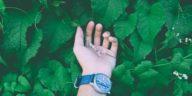 montre écologique
