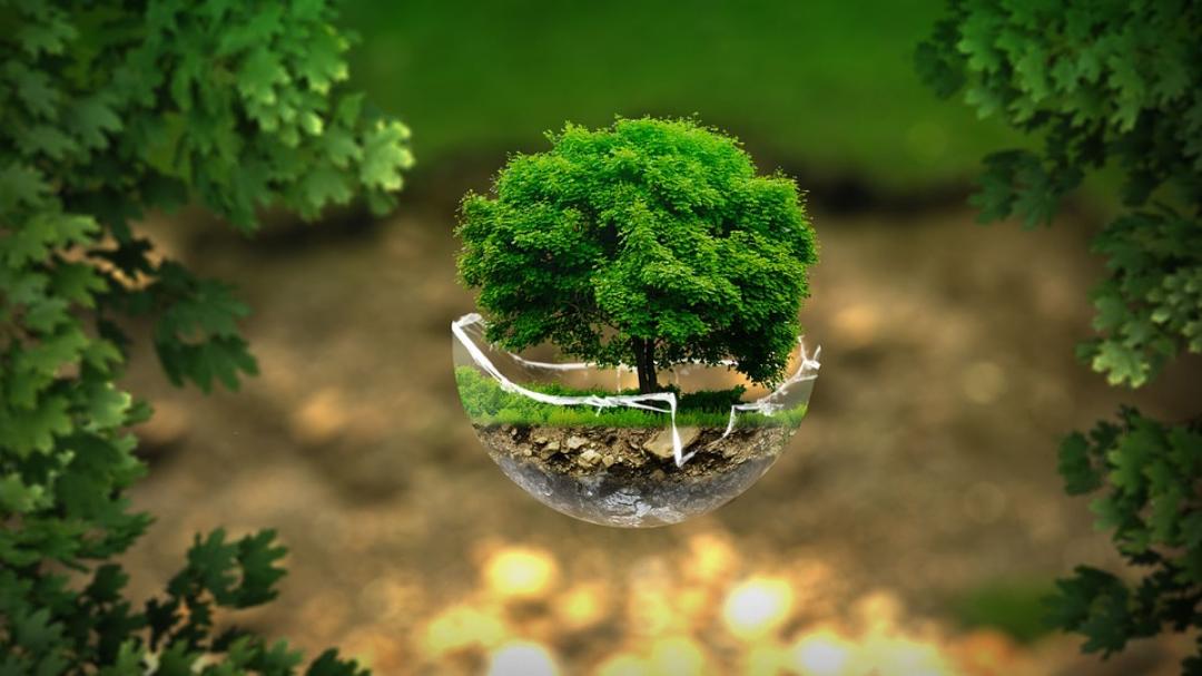 planète environnement écologie