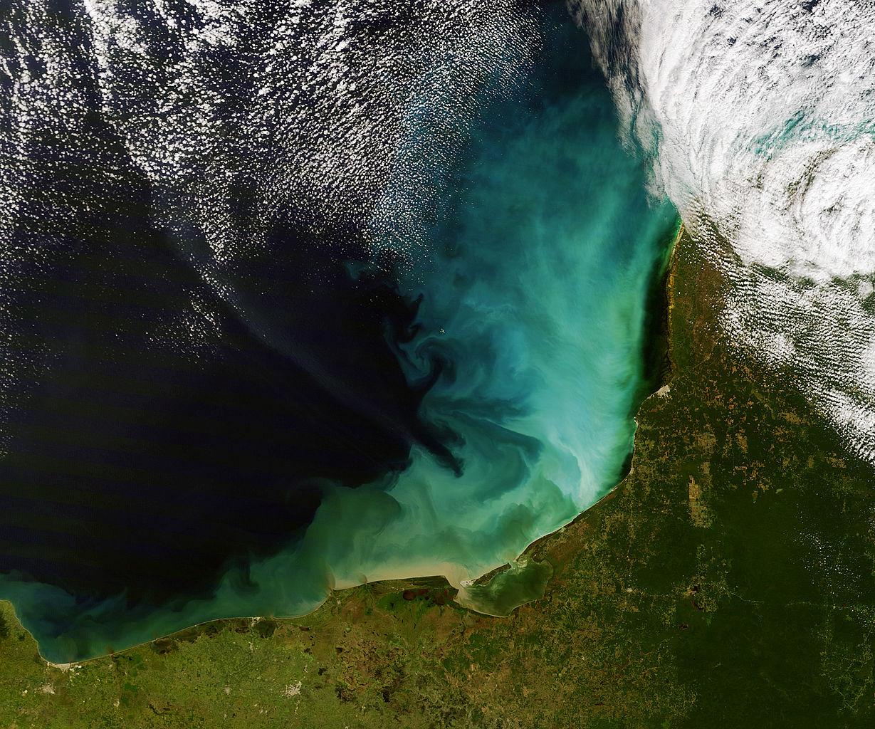 phytoplancton tache verte ocean