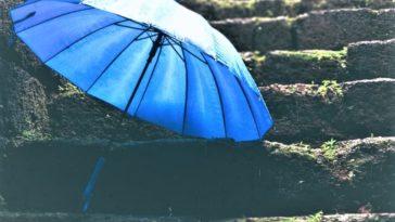 pluie petrichor