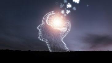 cerveau lobotomie idée
