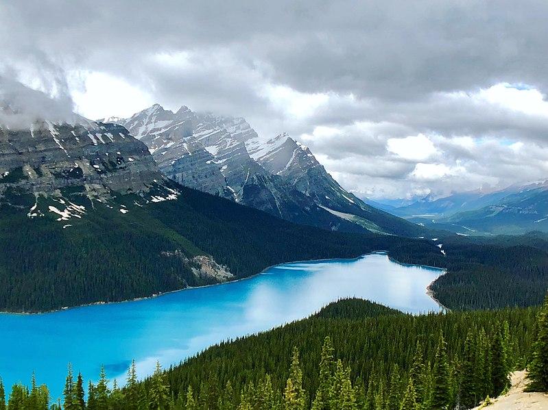 Lac Peyto Banff Canada randonnée