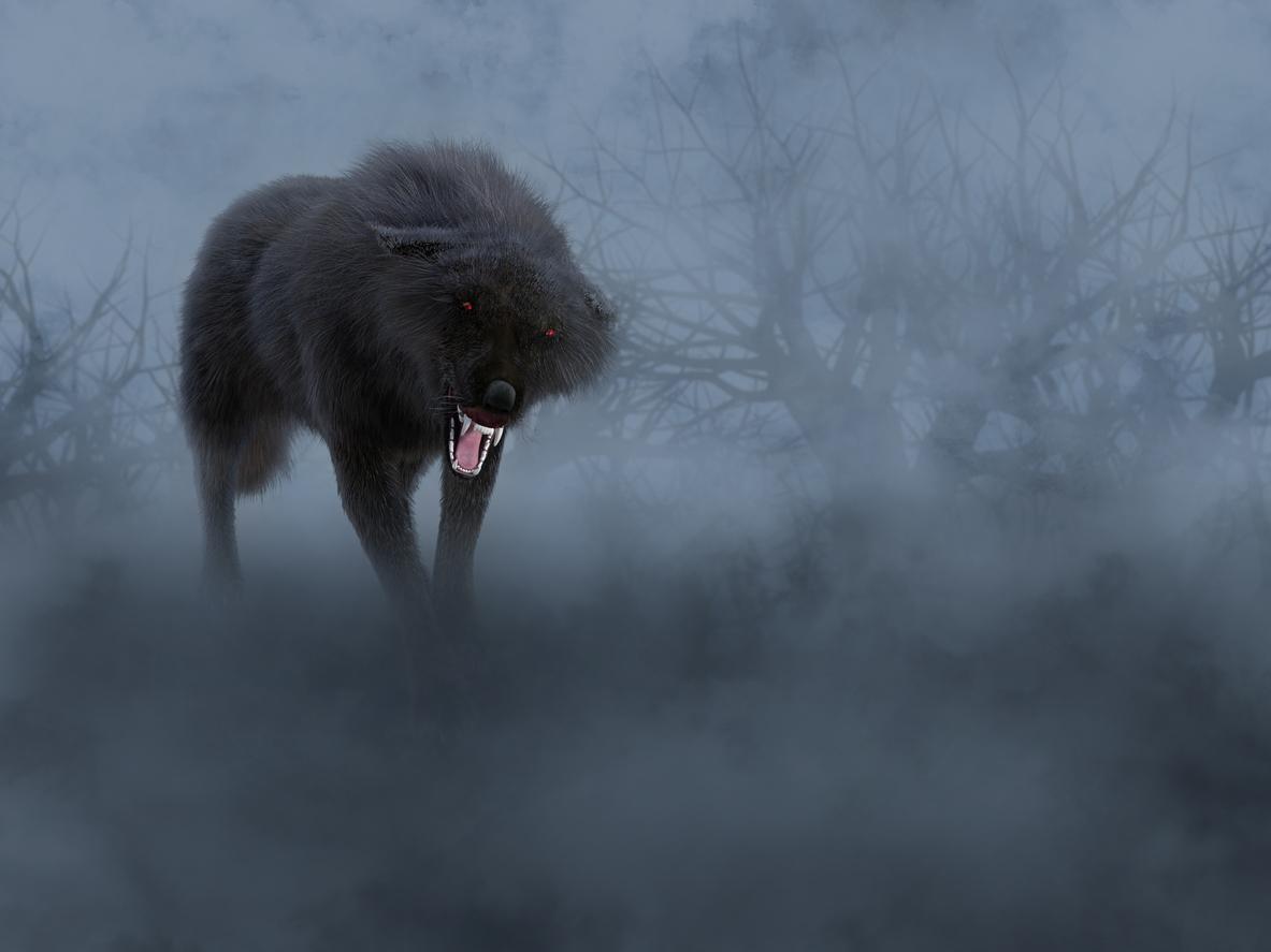 dessin loup noir brume bête du gévaudan
