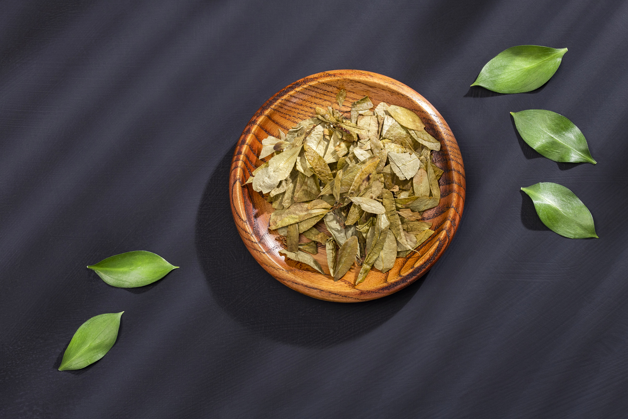 feuilles de coca séchées