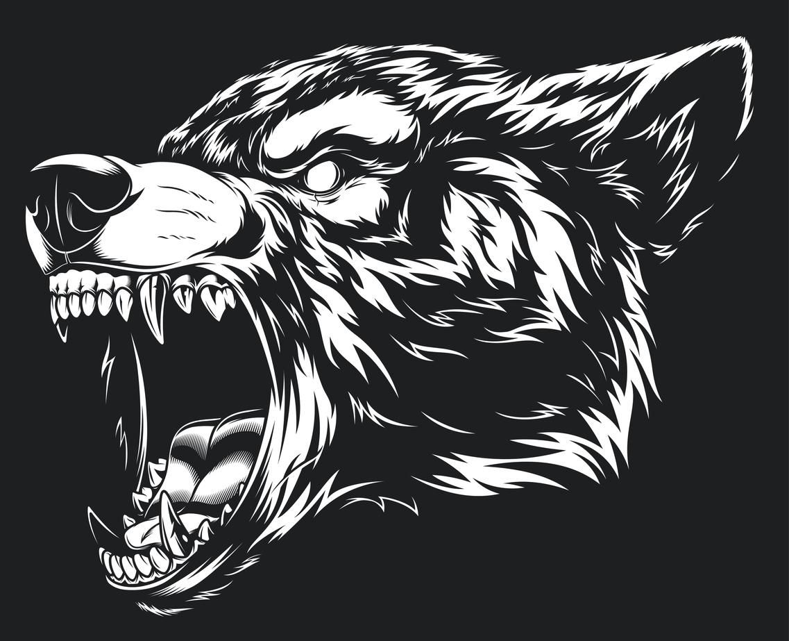 illustration tête de loup